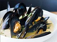 Mussels in saffron cream