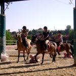 Pony_Club_3