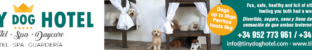 Tiny Dog Hotel