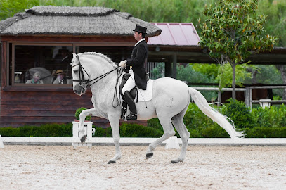 Marbella Horses – Doma Clasica – Equipo – Joaquin Legarre – copia